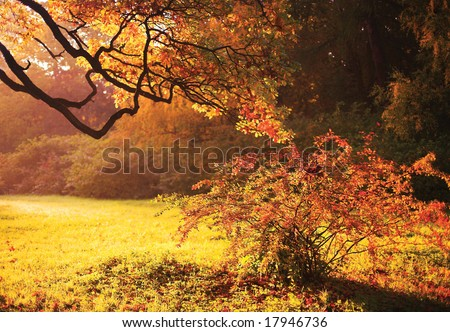 Yellow and pink autumn background - stock photo