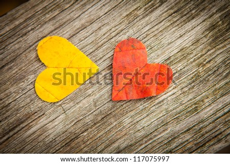 Yellow and red autumn leaves in love heart shape with wooden background. - stock photo