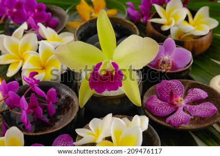 Yellow and white ,pink orchid on banana leaf background texture - stock photo