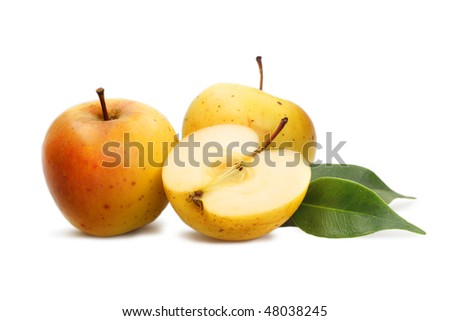 Yellow apples on a white background - stock photo