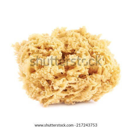 Yellow artistic sponge for drawing and grouting, object isolated over the white background - stock photo