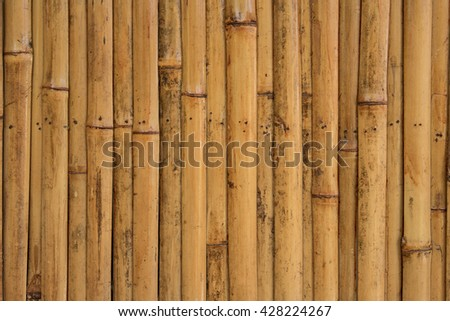 yellow bamboo fence, bamboo wall for nature background. - stock photo