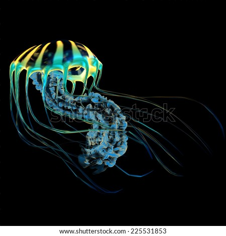 Yellow Blue Jellyfish - A bioluminescent Jellyfish is a predator catching small fish and organisms with their poisonous tentacles. - stock photo