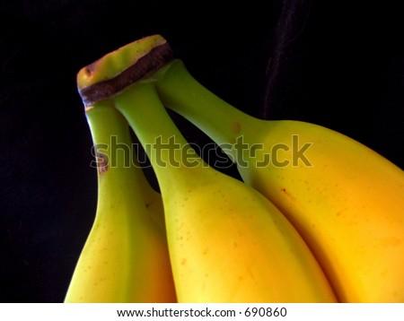 yellow bunch banana bananas - stock photo