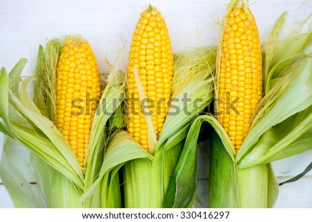 Yellow Corn Cobs Closeup on White Background, Top View, Macro Shot, Shallow DOF, Selective Focus - stock photo