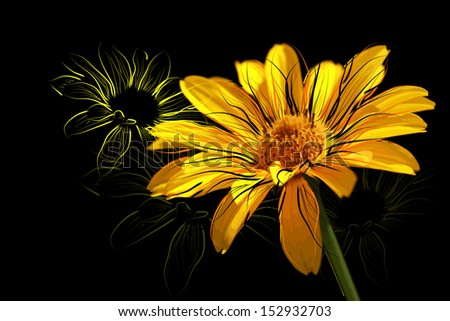 yellow daisies on a dark background. Raster  - stock photo
