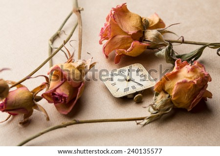 Yellow dry roses with vintage old clock dial - stock photo