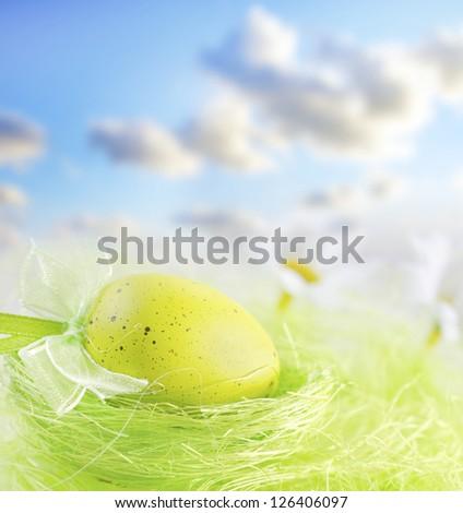 Yellow egg - stock photo