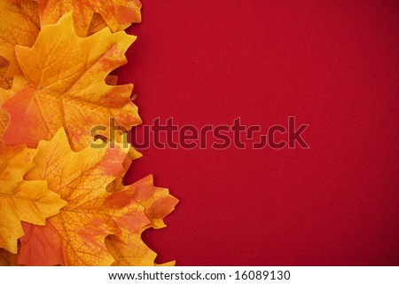 Yellow fall leaves on a red background - stock photo