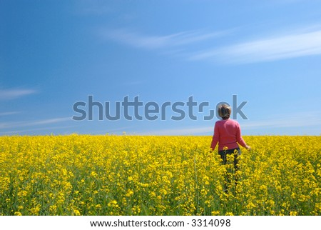 Yellow field, the blue sky and the woman in pink - stock photo