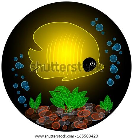 Yellow fish glows in the dark - stock photo