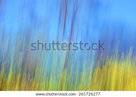 Yellow flowers and trees against blue sky. Motion blur abstract spring landscape. - stock photo