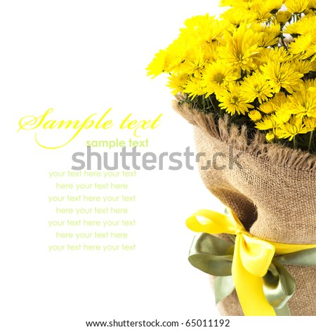 Yellow flowers decorated with canvas isolated on the white - stock photo