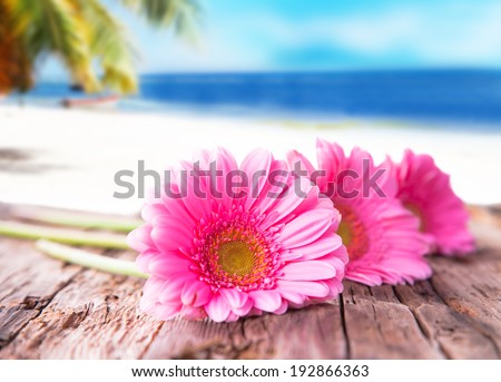 Yellow gerbera daisies on wood with tropical beach. Holiday concept. - stock photo