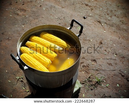 yellow gold colorful sweet maize corn boiling cooking in a large aluminum pot with charcoal outdoor on a pathway in a street market in THAILAND - stock photo