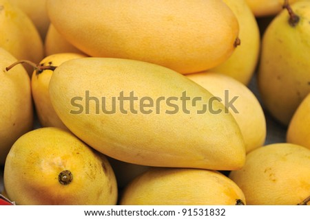 Yellow mango,Thailand - stock photo