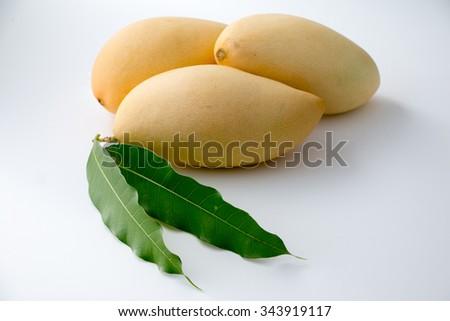 Yellow Mango, Thailand favorite fruit isolated on a white background  - stock photo