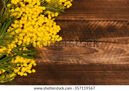 Yellow Mimosa bouquet on a rustic wood panels - stock photo