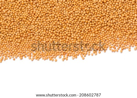 Yellow Mustard Seeds - stock photo