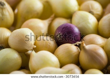 Yellow onions with red onion in the center - stock photo