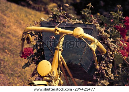 Yellow painted old bicycle with a geranium flowers in wooden box. Garden vintage decoration. Toned photo. - stock photo