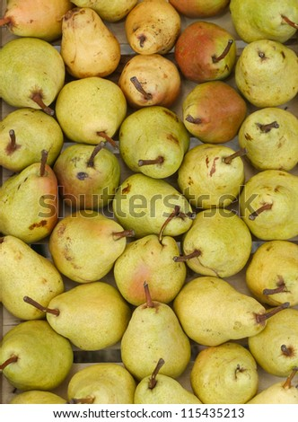 Yellow pears - stock photo