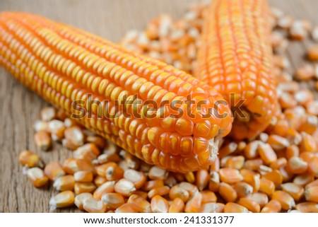 Yellow ripe corn on wooden table - stock photo