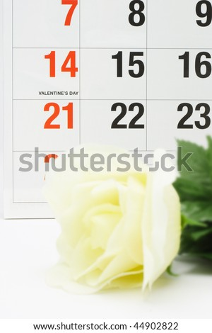 Yellow rose next to calendar page showing Valentine's day - stock photo