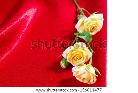Yellow roses on red silk background - stock photo