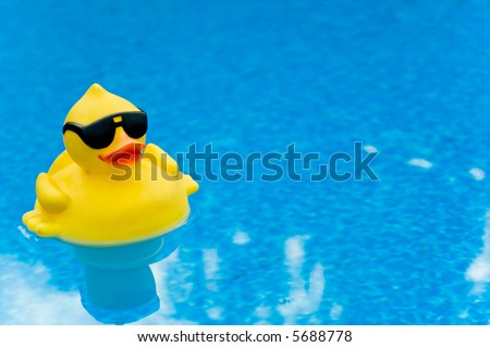 Yellow Rubber duck with shades on blue water, space for copy - stock photo