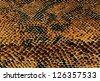 Yellow snake skin background - stock photo