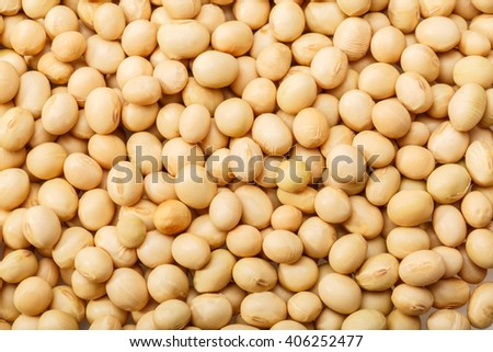yellow soy bean pattern as background - stock photo