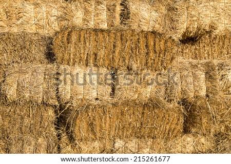 Yellow straw bale wall texture background - stock photo