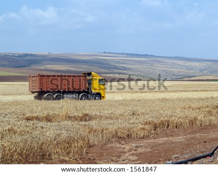 Yellow truck in wheat field - stock photo