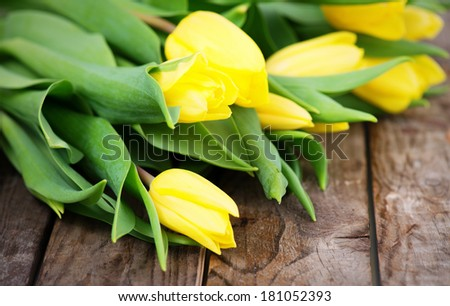 yellow tulips on rustic, wooden background - stock photo