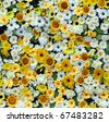 yellow white paper flowers seamless background pattern - stock photo