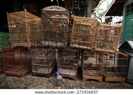 YOGYAKARTA, INDONESIA - JULY 31, 2011: Vendor sells song birds and parrots at the Pasar Ngasem Market in Yogyakarta, Central Java, Indonesia. - stock photo