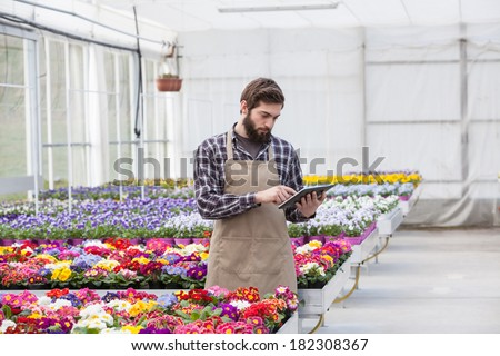 Young adult male garden worker in apron using digital tablet at greenhouse - stock photo