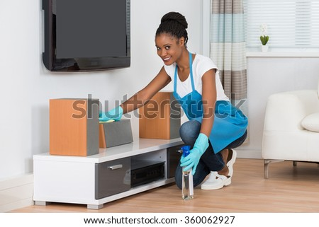 Young African Woman Cleaning Furniture In Living Room - stock photo