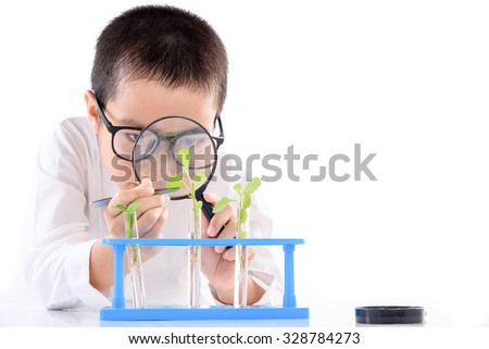Young Asian boy check young seedling plant in glass tube for his experimental on white background - stock photo