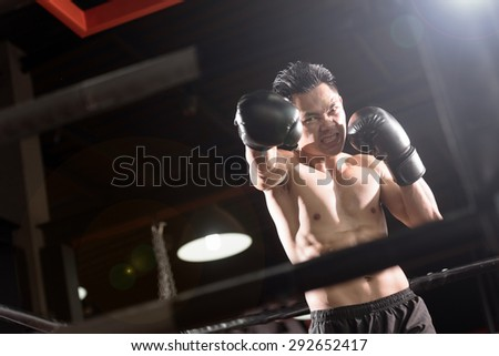 Young athletic man with boxing gloves on boxing ring. lens flare - stock photo