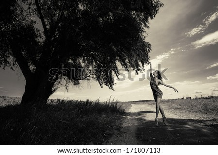Young beautiful ballerina dancing outdoors in a field - stock photo