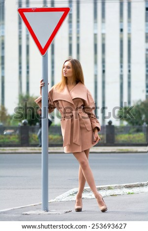 Young beautiful leggy chestnut stands near the road sign - stock photo