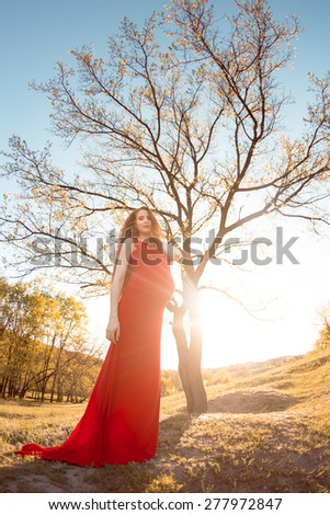 Young beautiful pregnant woman with long brown hair in red dress. Fisheye lens some blurry at the edge. - stock photo