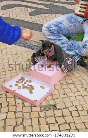 Young beggar musician with small cute dog play accordion and ask for money on street of Lisbon, Portugal on November, 2013. - stock photo