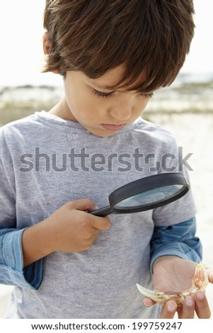 Young boy examining seashell - stock photo