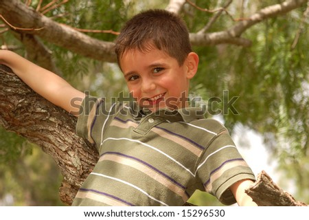 Young boy in a tree - stock photo