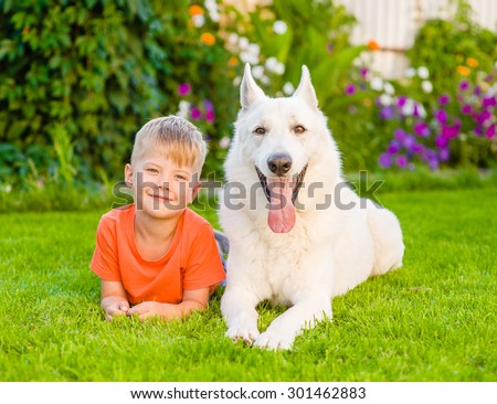 young boy lying with White Swiss Shepherd dog on green grass - stock photo