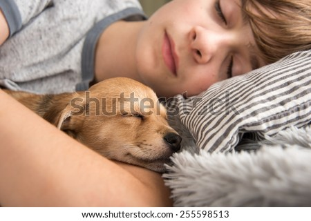 Young Boy with his New Puppy Brother - stock photo