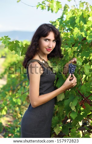 Young brunette woman picking grapes in vineyard - stock photo